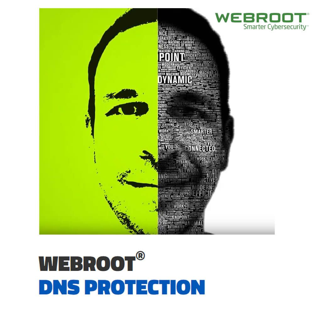 Webroot DNS Protection for Business 2-Year Subscription