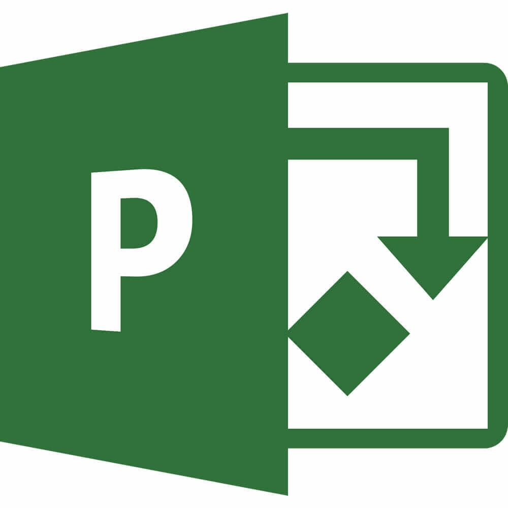 Microsoft Project 2019 for Windows (Government)