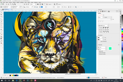 Should You Use Corel Draw or Corel Painter? - Blog
